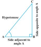 Trigonometry Basics | Trigonometry formulas and identities