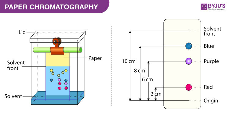Diagram of paper chromatography