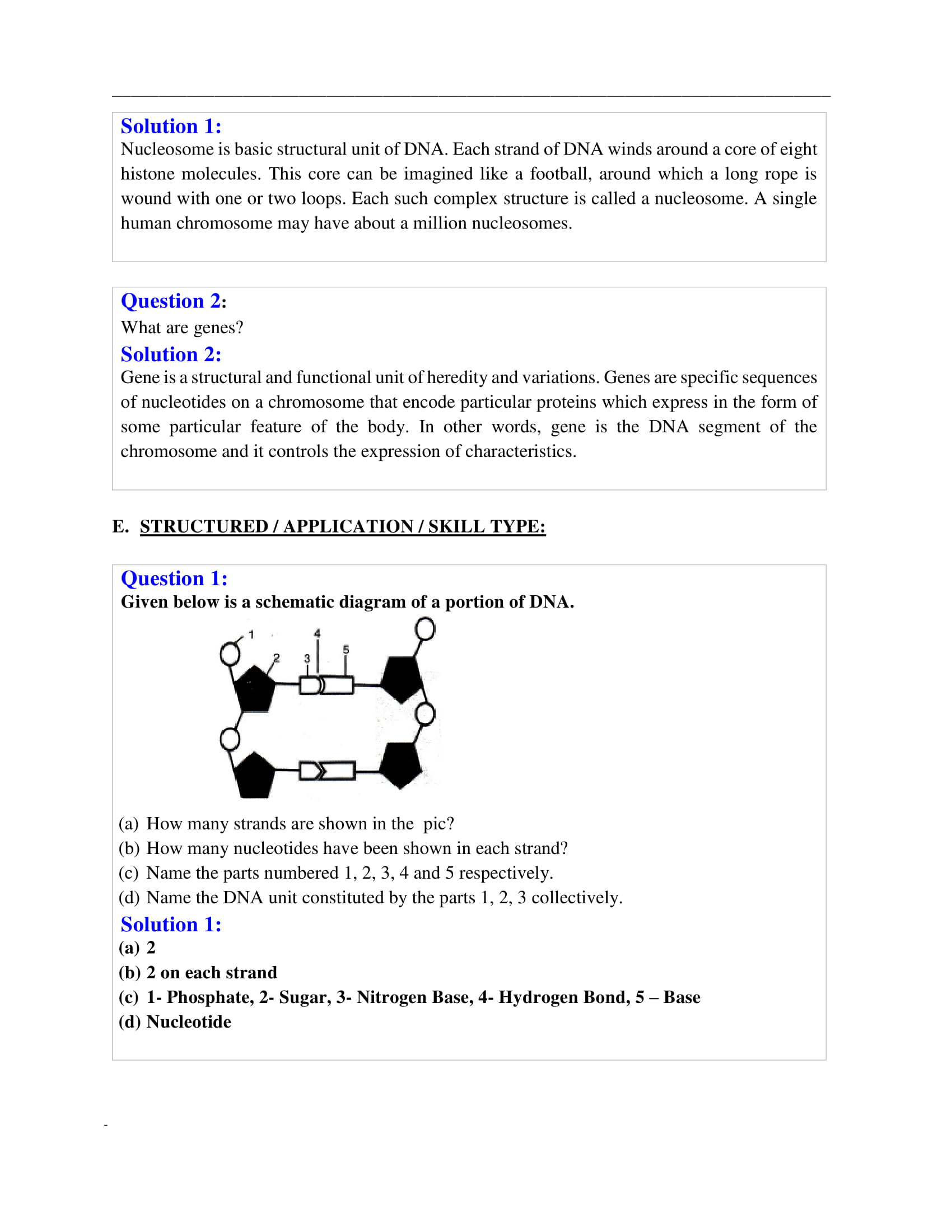 icse-selina-biology-solutions-class-10-chapter-1-cell-cycle-cell-division-and-structure-of-chromosomes-03
