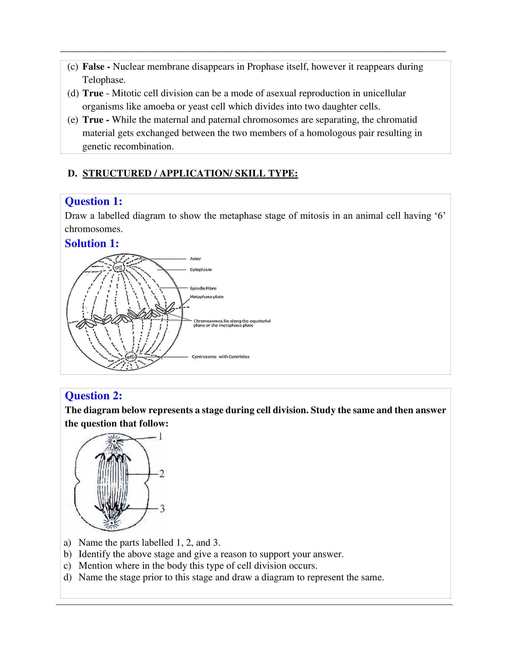 icse-selina-biology-solutions-class-10-chapter-1-cell-cycle-cell-division-and-structure-of-chromosomes-08