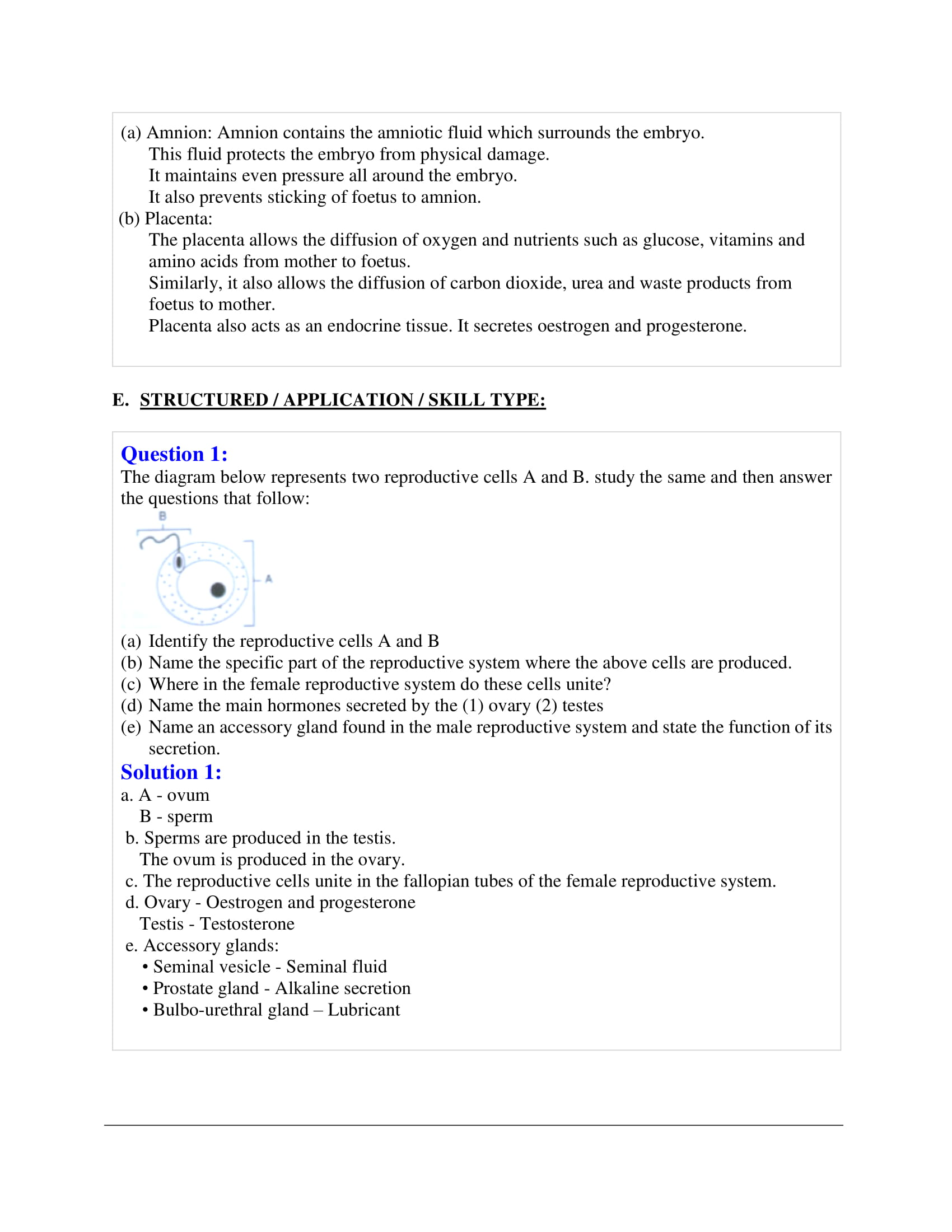 icse-selina-biology-solutions-class-10-chapter-10-the-reproductive-system-16
