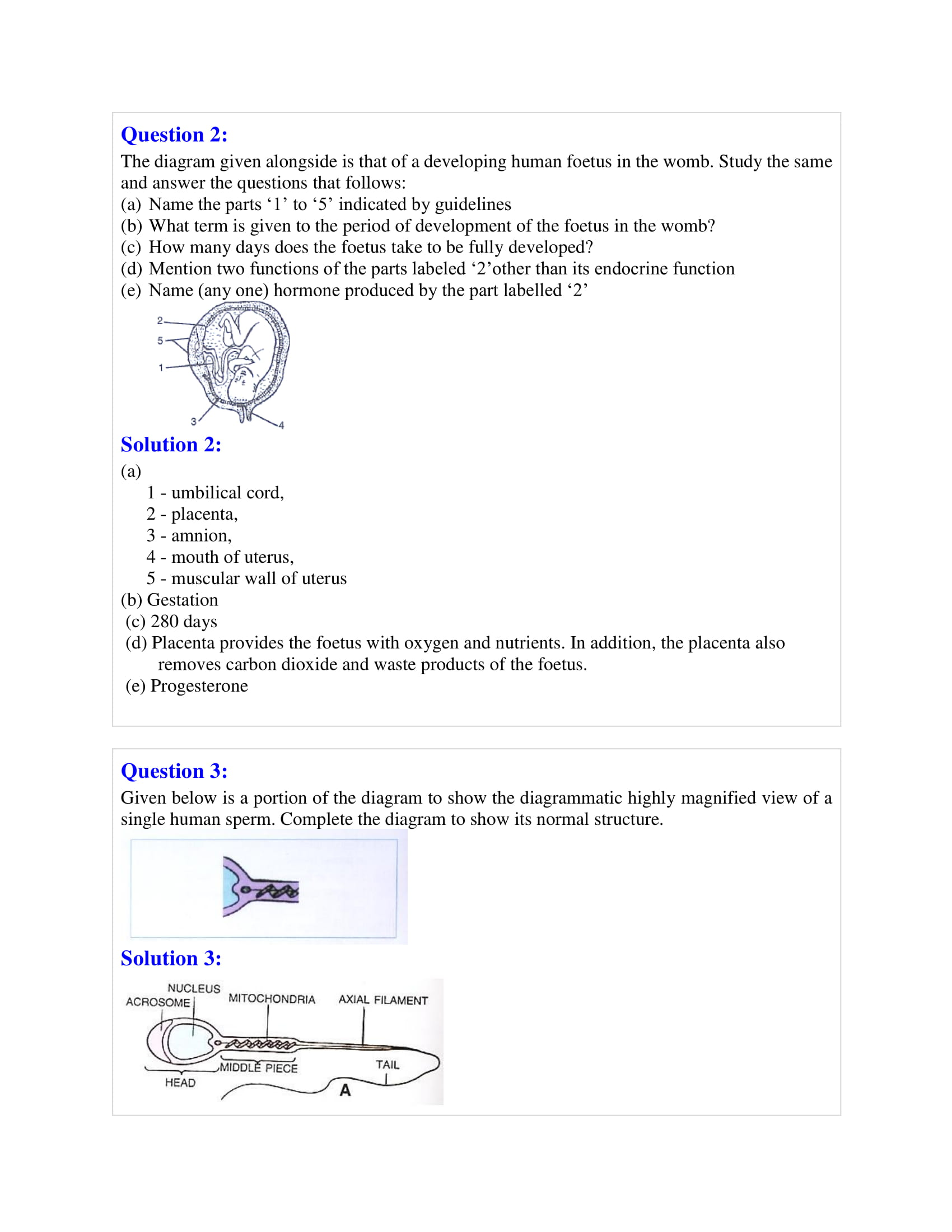 icse-selina-biology-solutions-class-10-chapter-10-the-reproductive-system-17