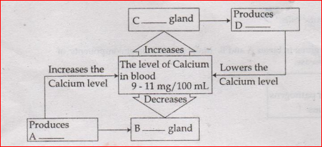 Kerala SSLC Class 10 Biology Important Questions-2