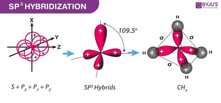 sp3d hybridization