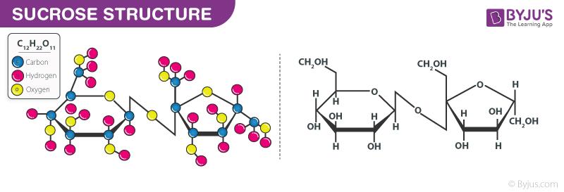 Sucrose structure