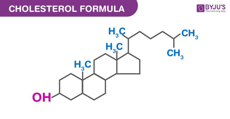 Cholesterol Formula