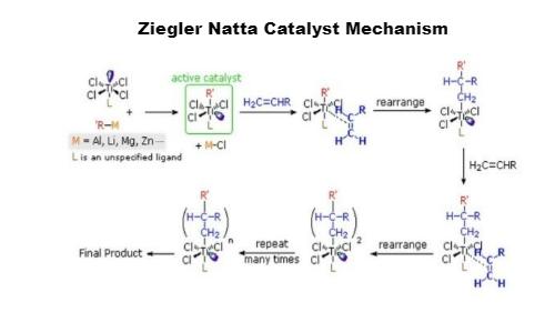 Ziegler-Natta Catalyst mechanism