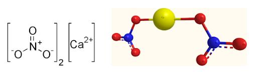 Calcium Nitrate Structure