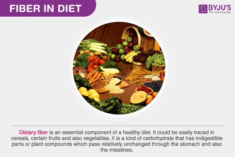 fiber in diet