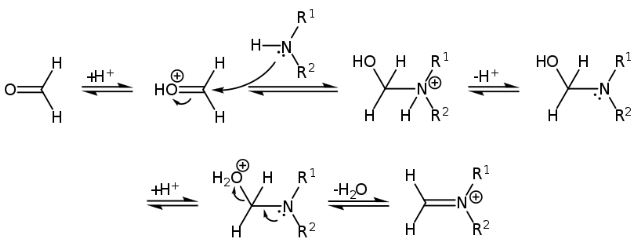 Mannich Reaction Mechanism Step 1