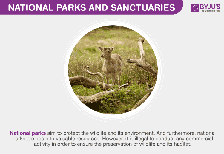 National Parks and Sanctuaries
