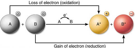 Redox Reactions (Oxidation - Reduction Reaction)