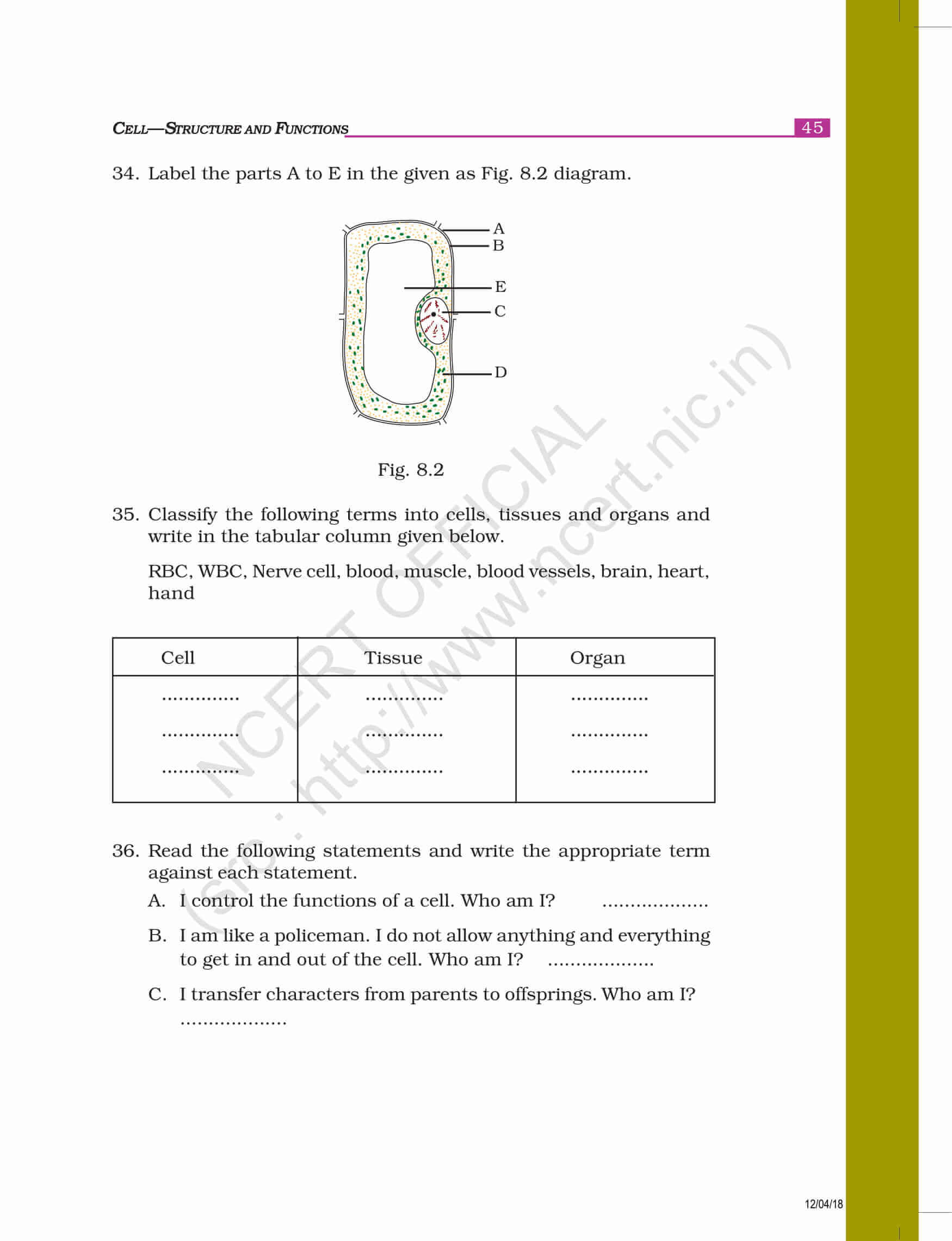NCERT Exemplar Class 8 science
