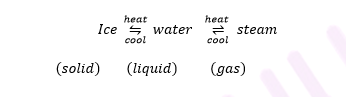 ICSE Class 8 Chemistry Selina Solutions Chapter 1- Matter-1