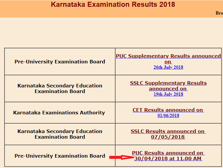 KSEEB 2nd PUC Results 2019 page