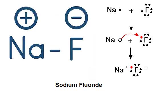 Sodium Flouride