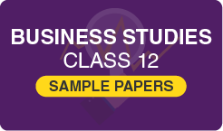 sample papers for class 12 business studies
