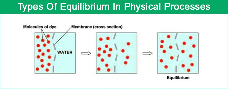 Physical Equilibrium