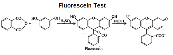 Fluorescein Test