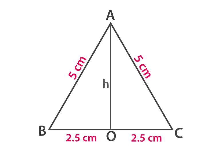 Properties of Triangle - Example