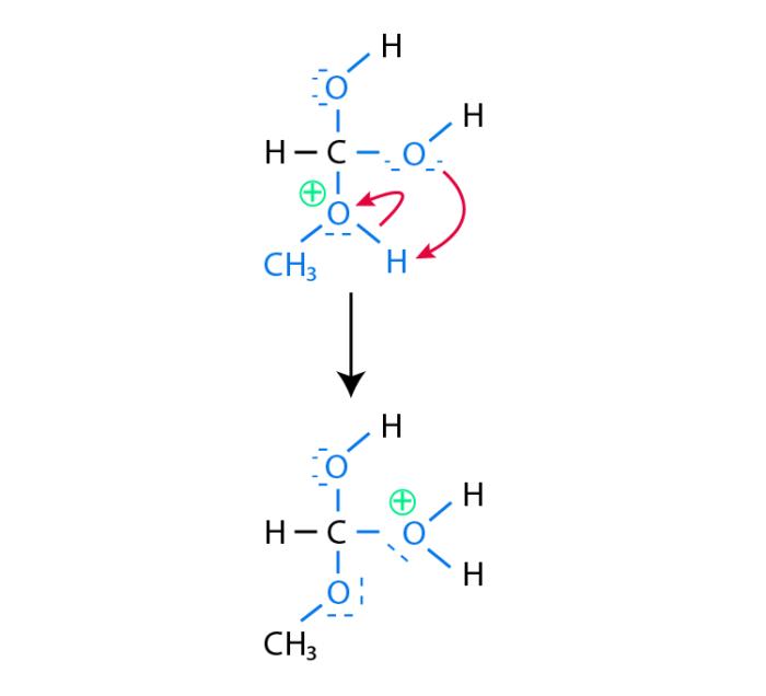 Esterification_Mechanism_step_3