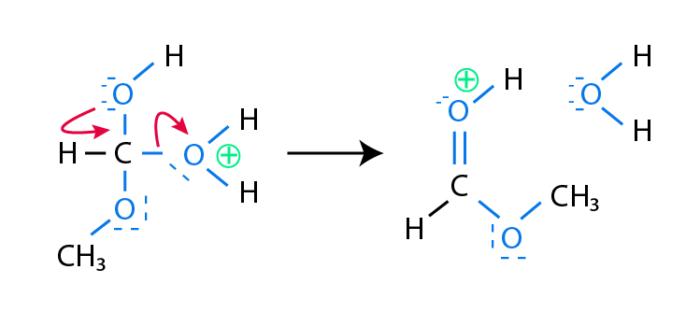 Esterification_Mechanism_step_4