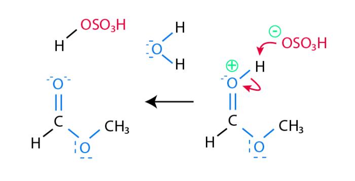 Esterification_Mechanism_step_5