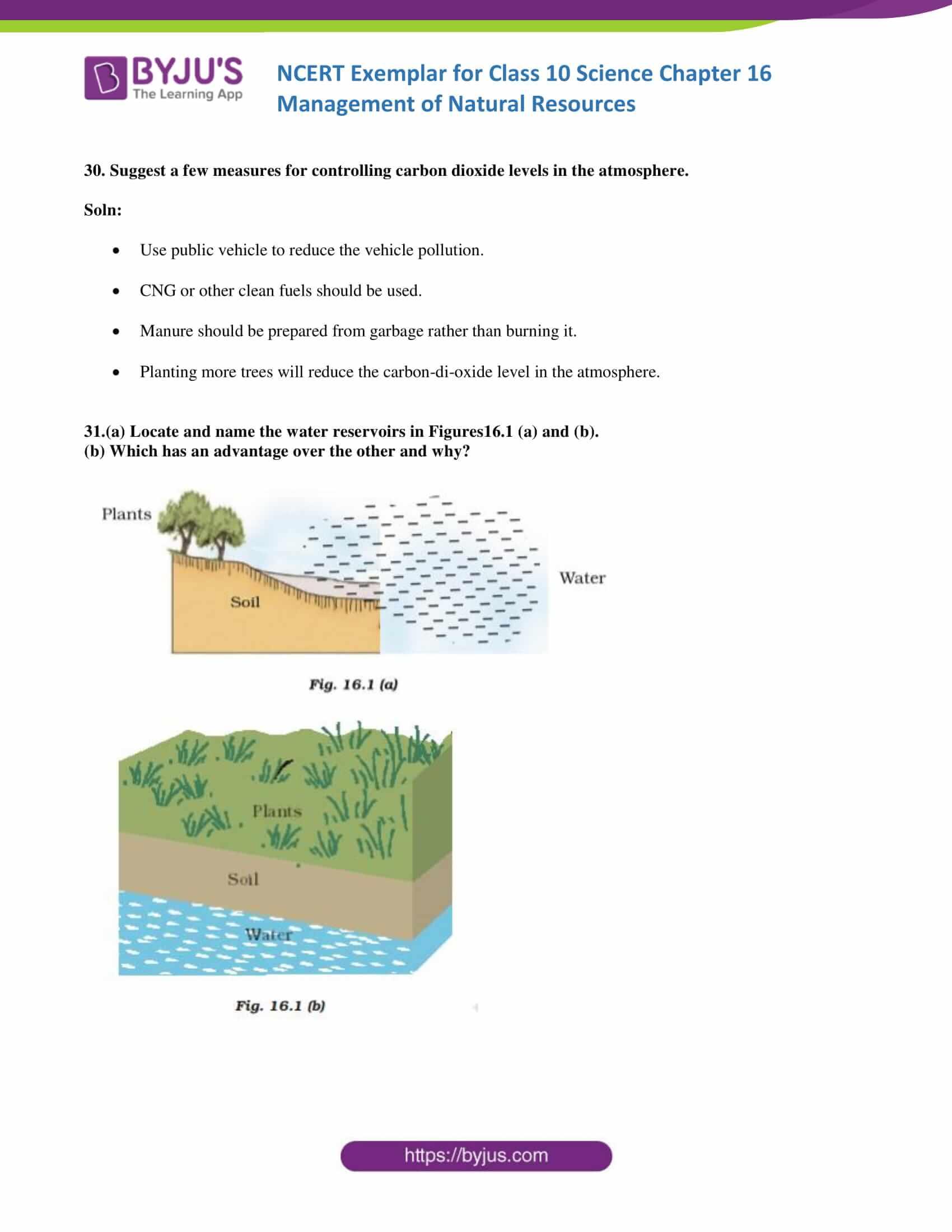 NCERT Exemplar solution class 10 Science Chapter 16 part 10