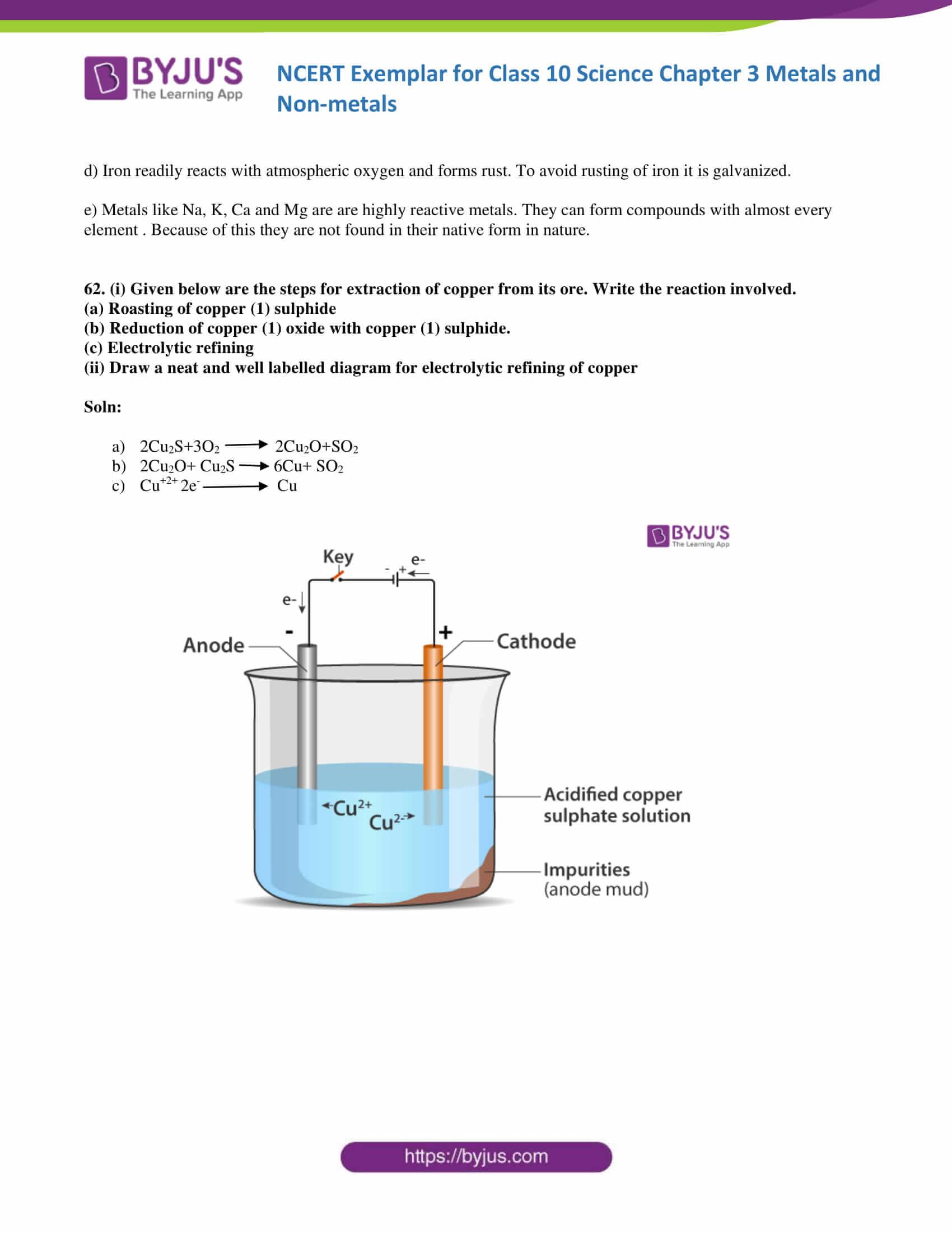 NCERT Exemplar solution class 10 Science Chapter 3 part 20