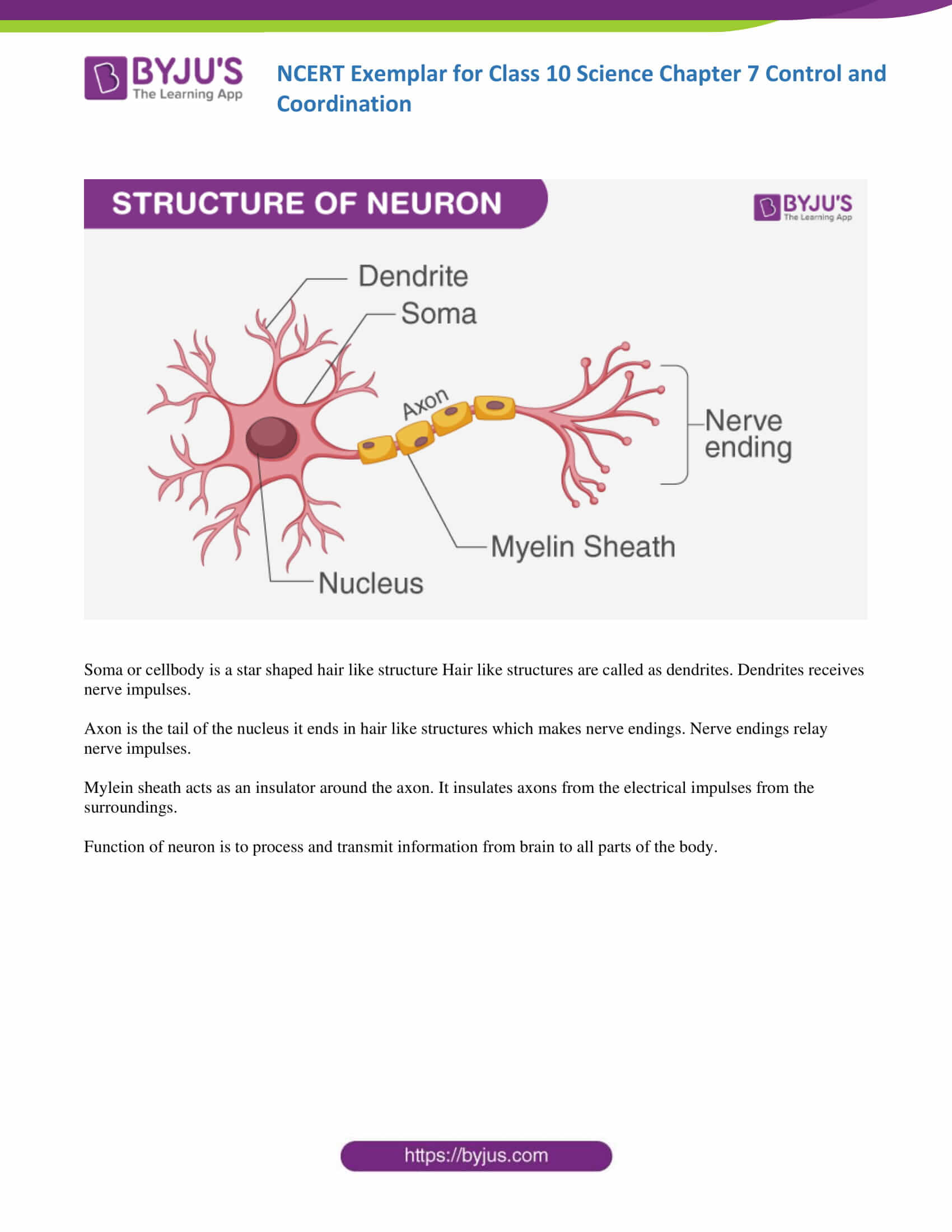 NCERT Exemplar solution class 10 Science Chapter 7 part 17