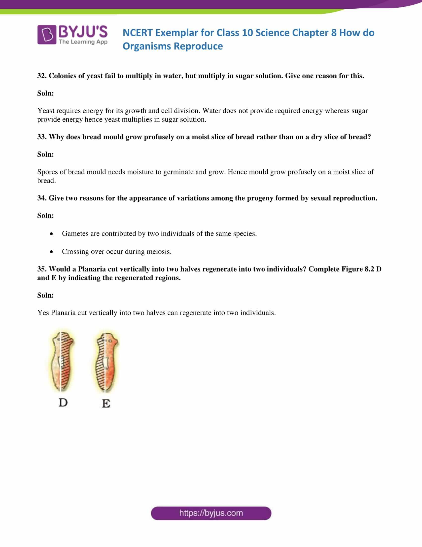 NCERT Exemplar solution class 10 Science Chapter 8 part 11