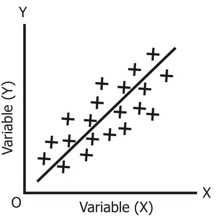 High Degree of Positive Correlation