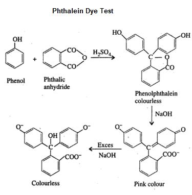 Phthalein Dye Test