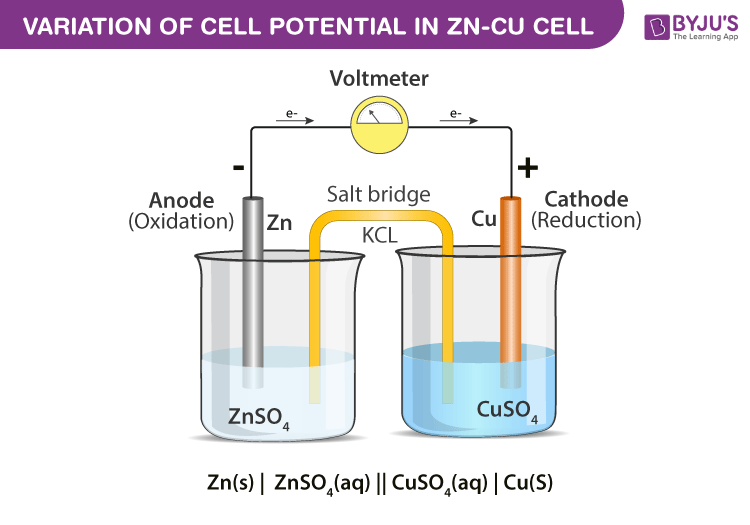Variation of Cell Potential in Zn-Cu Cell