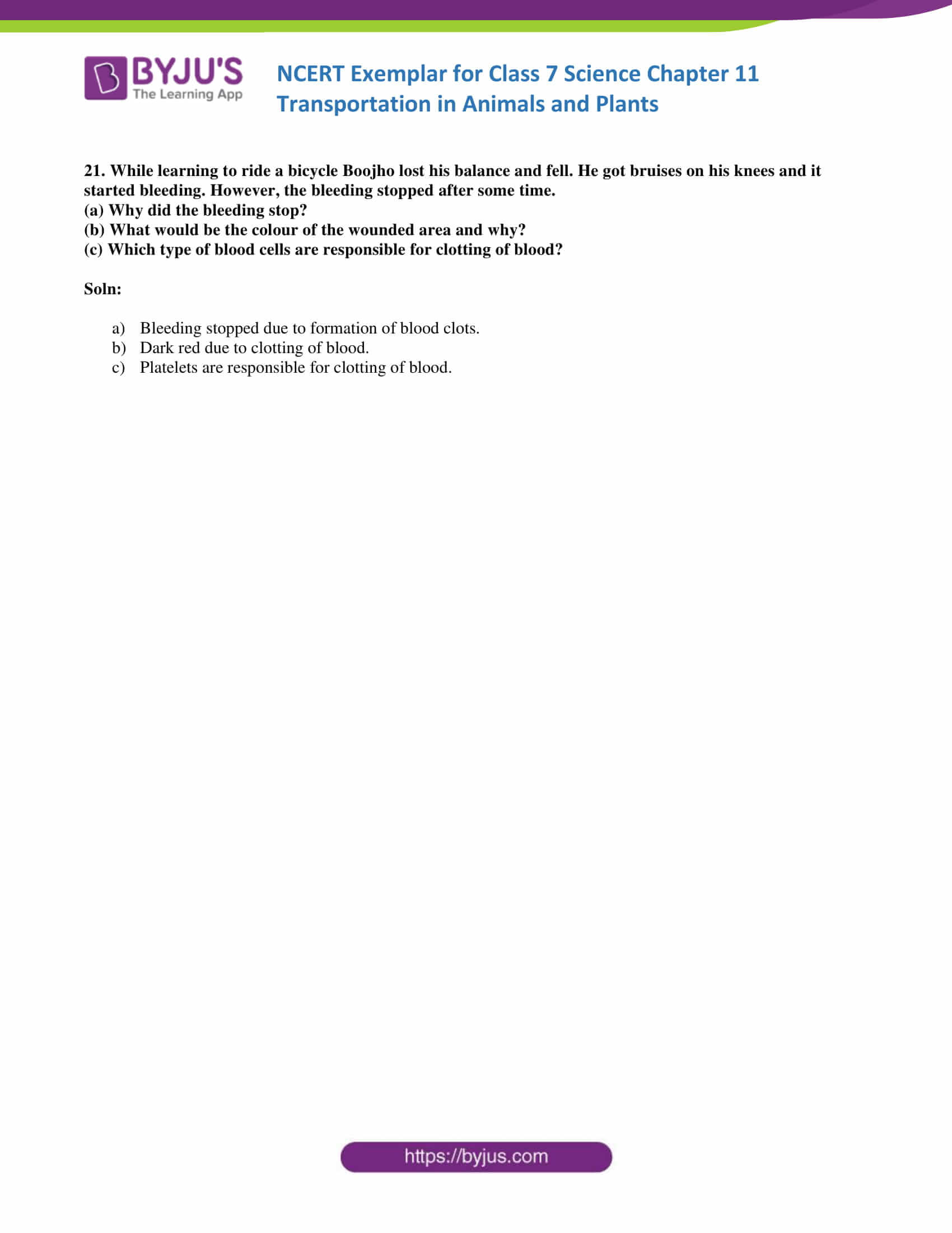 NCERT Exemplar solution class 7 science Chapter 11 8