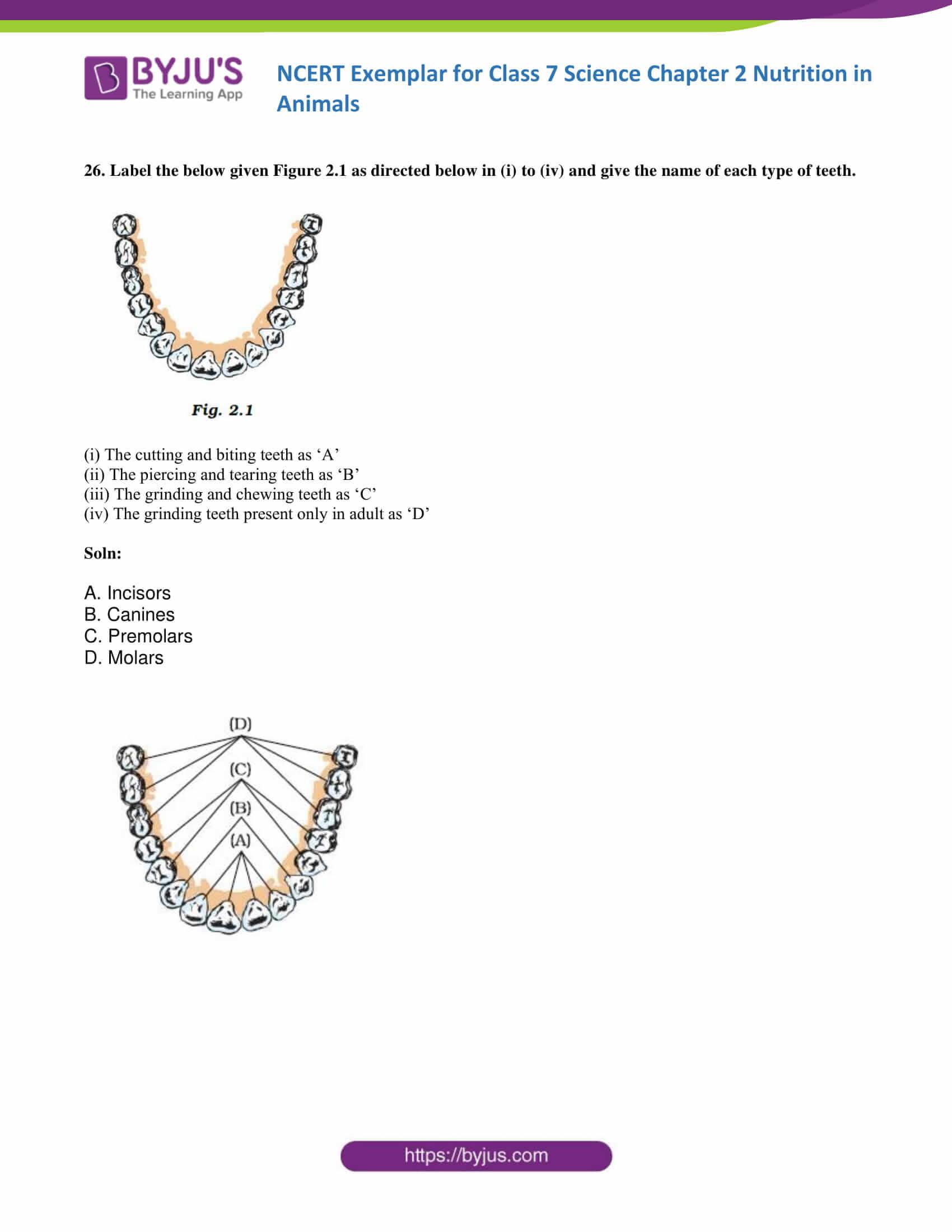 NCERT Exemplar solution class 7 science Chapter 2 10