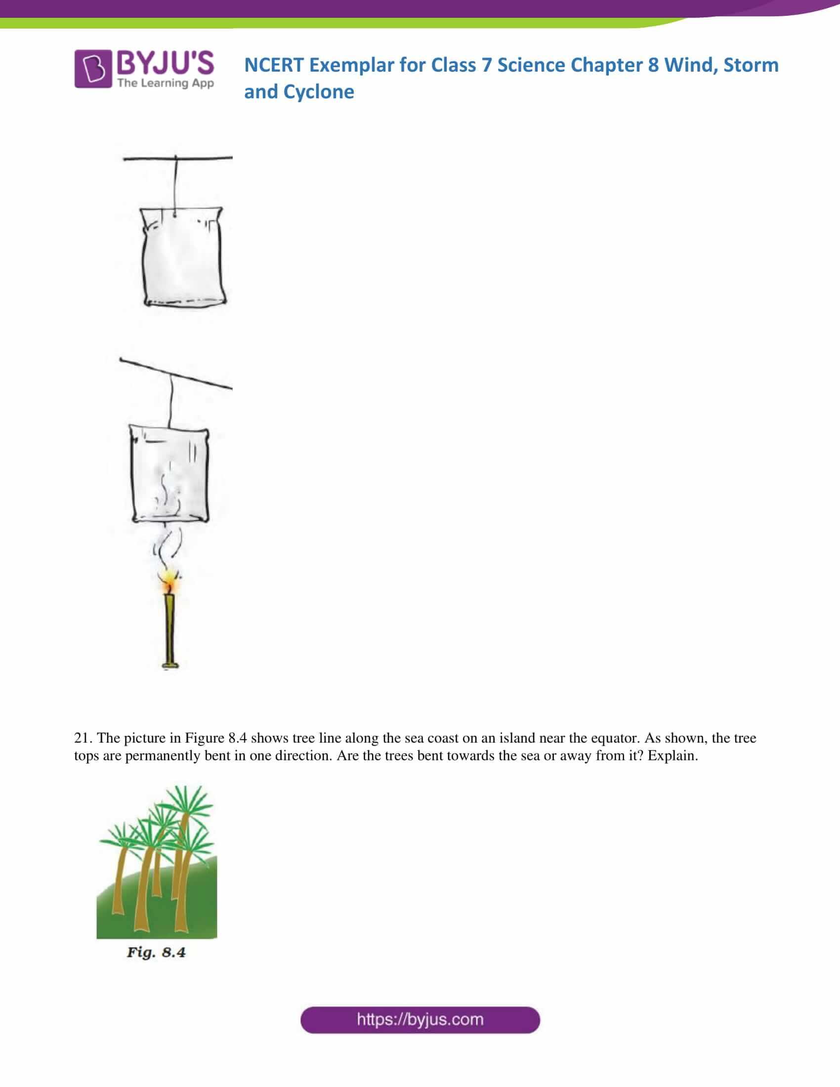 NCERT Exemplar solution class 7 science Chapter 8 7