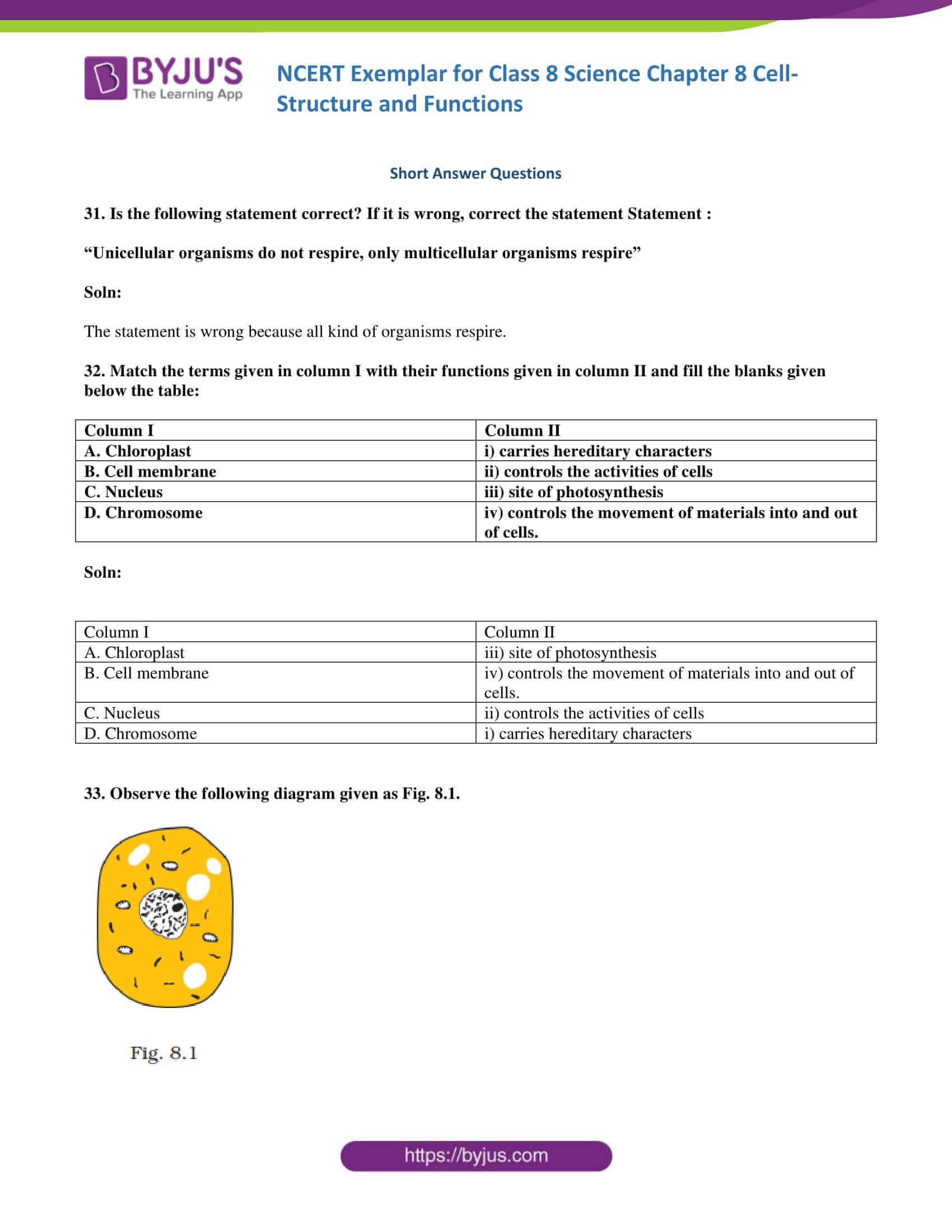 NCERT Exemplar solution class 8 Science Chapter 8 10