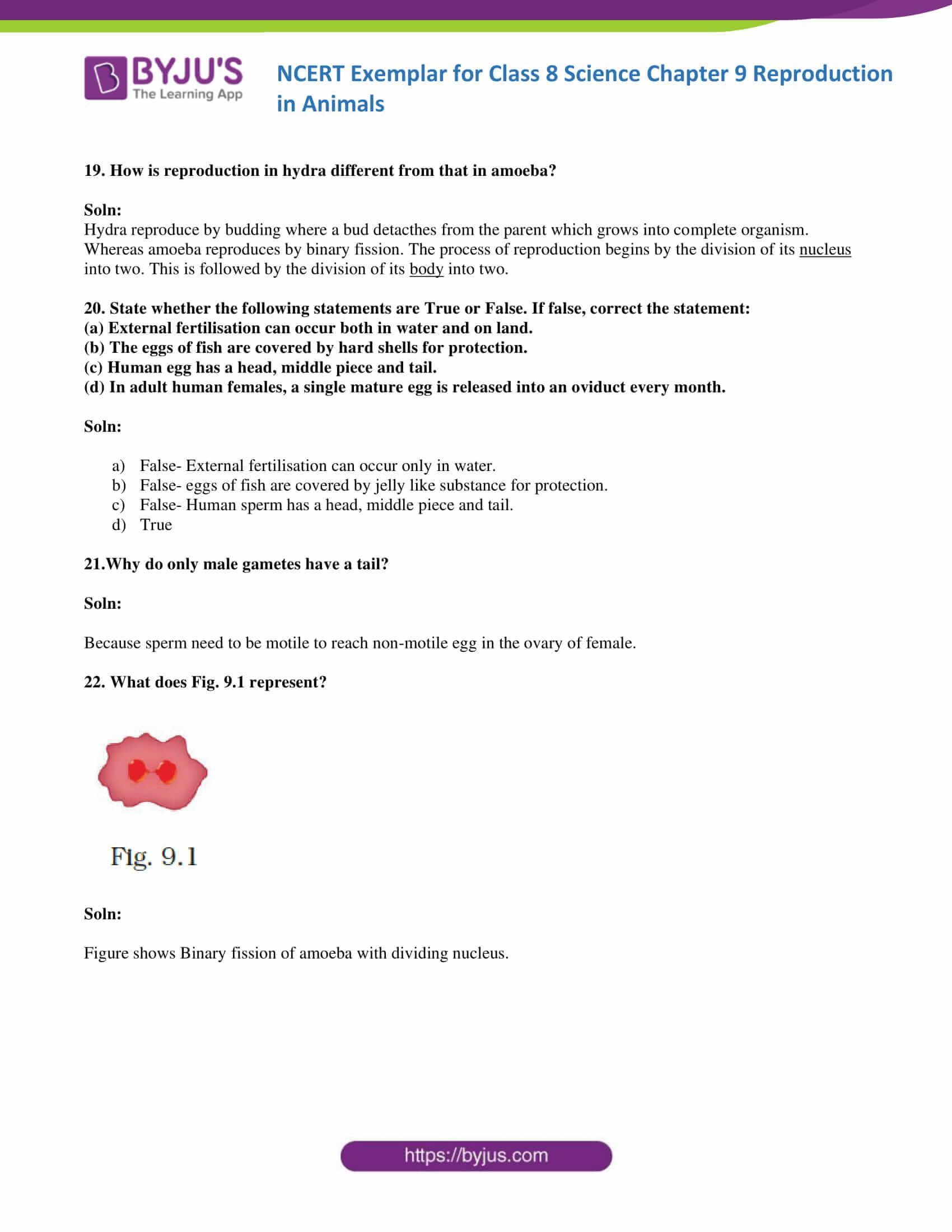 NCERT Exemplar solution class 8 Science Chapter 9 06