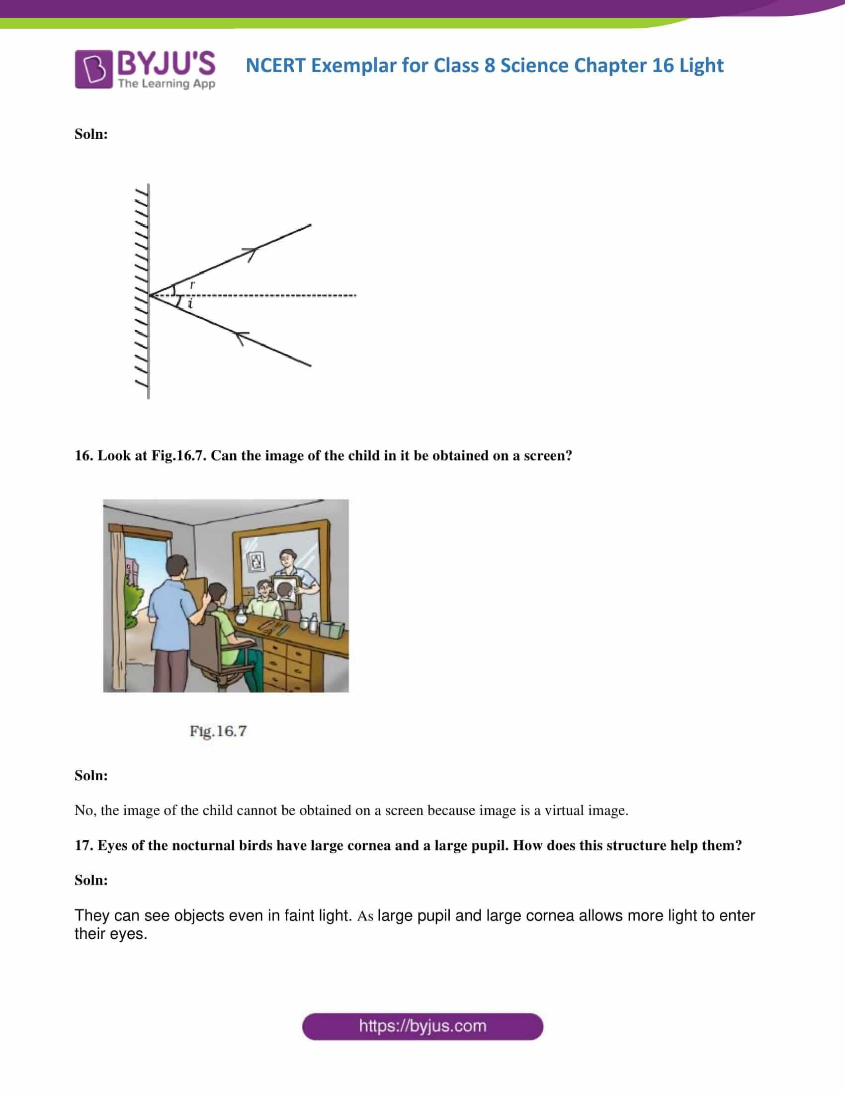 NCERT Exemplar solution class 8 science chapter 16 part 07