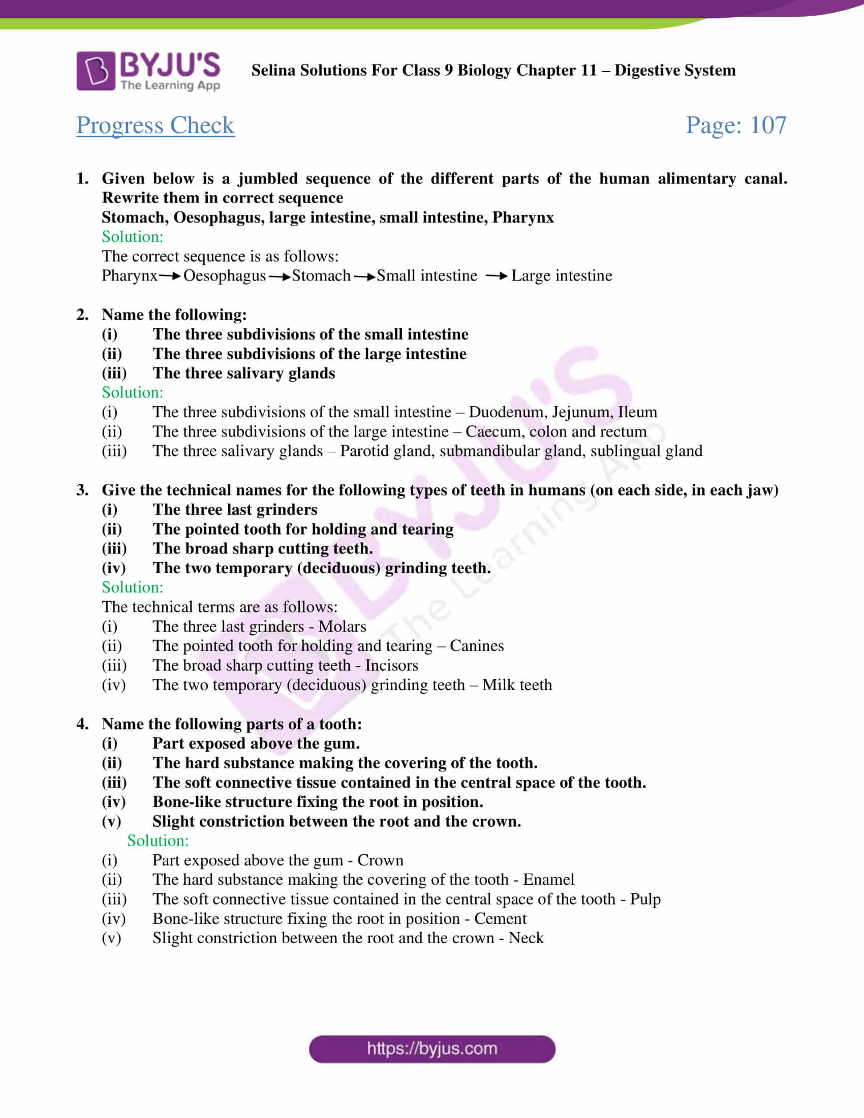 Selina Solutions Class 9 Concise Biology Chapter 11 Digestive System -Download Free PDF