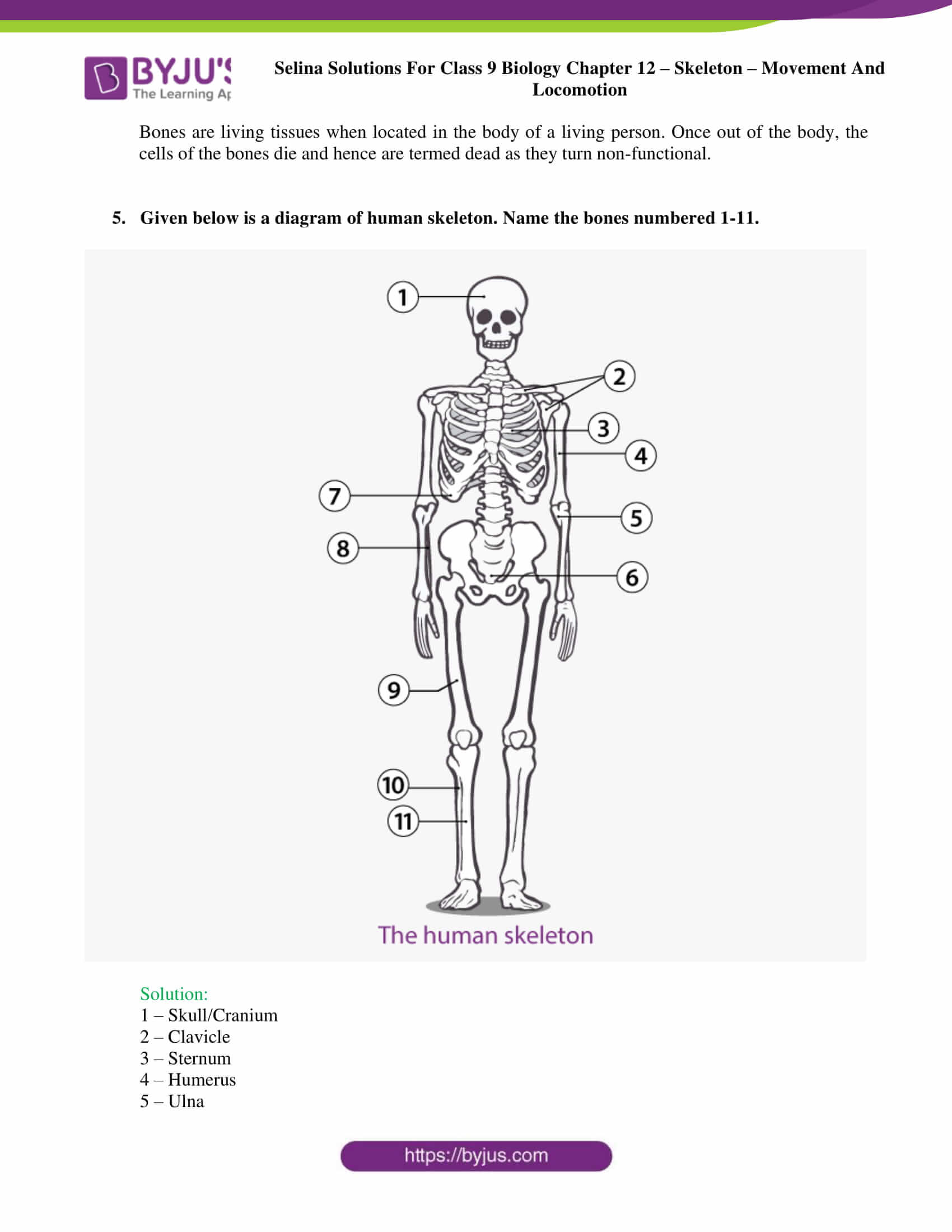 selina Solutions For Class 9 Biology Chapter 12 part 8