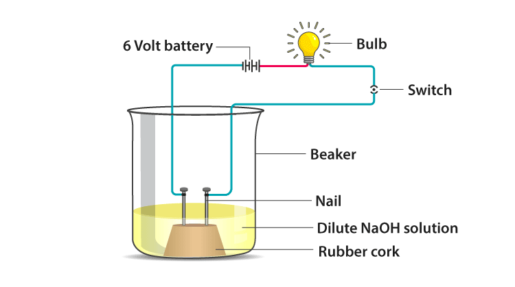 demonstrate electrical conductivity through an electrolyte