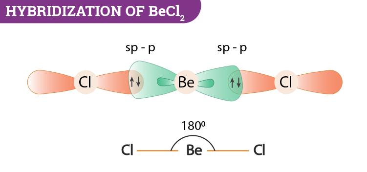 Hybridization of BeCl2