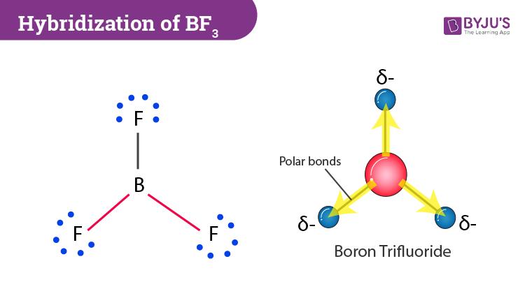 Hybridization of BF3