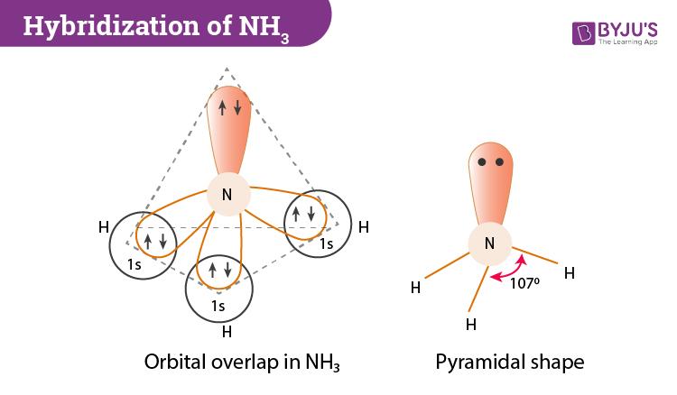 Hybridization of NH3