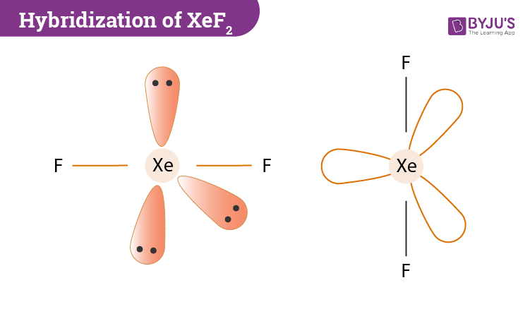 Hybridization Of XeF2