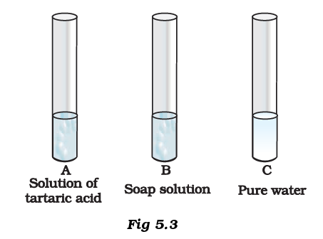 NCERT Exemplar Solutions Class 7 Science Chapter 5-sol-4