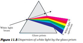 ncert solutions class 10 science chapter 11 human eye and colorful world fig 11