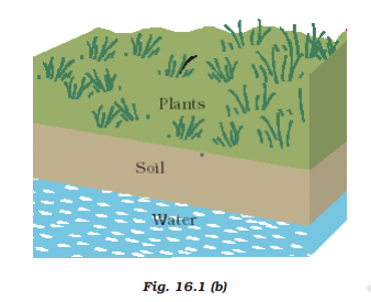 ncert solutions class 10 science chapter 16 management of natural resources fig 2